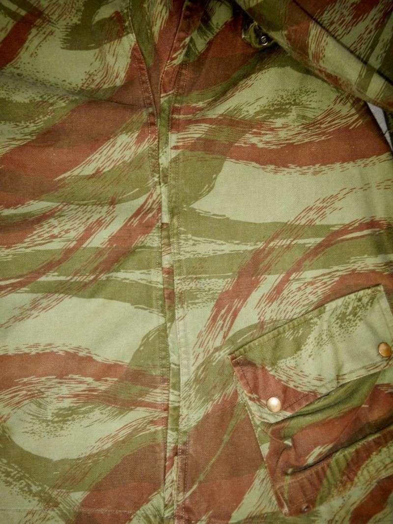 French lizard camo uniforms Dscn0547