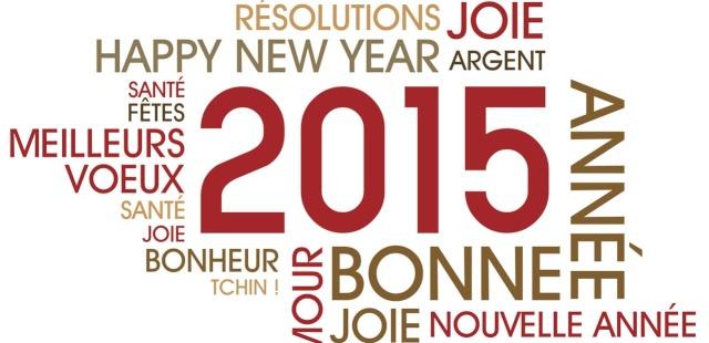 BONNE ANNÉE 2015 A TOUS  201511