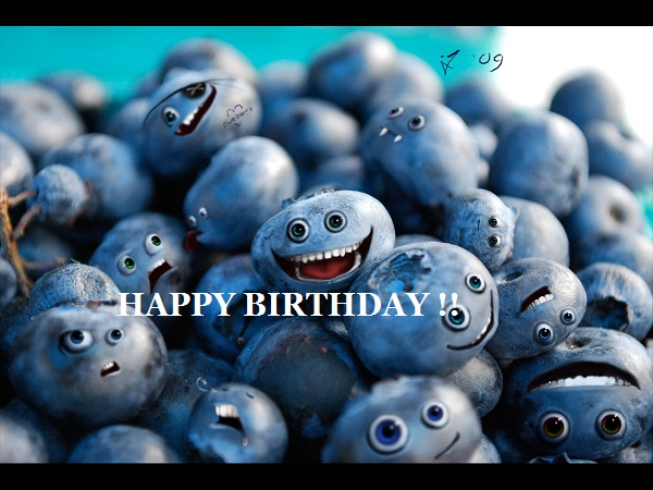 Happy Birthday Alex (Jedi Blueberry) Bluebe10