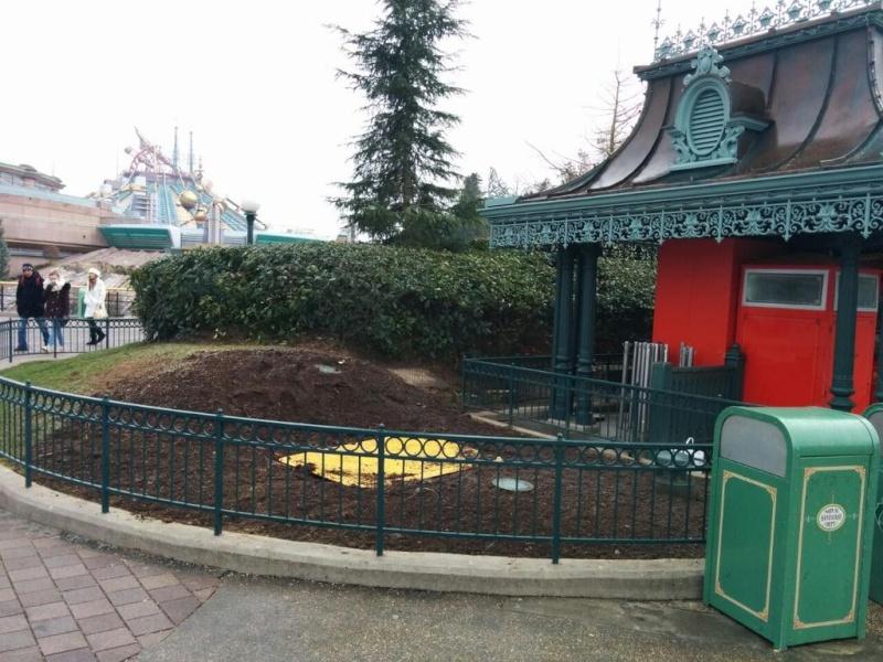 Remplacement des arbres à Disneyland Paris - Page 4 B78mbr10