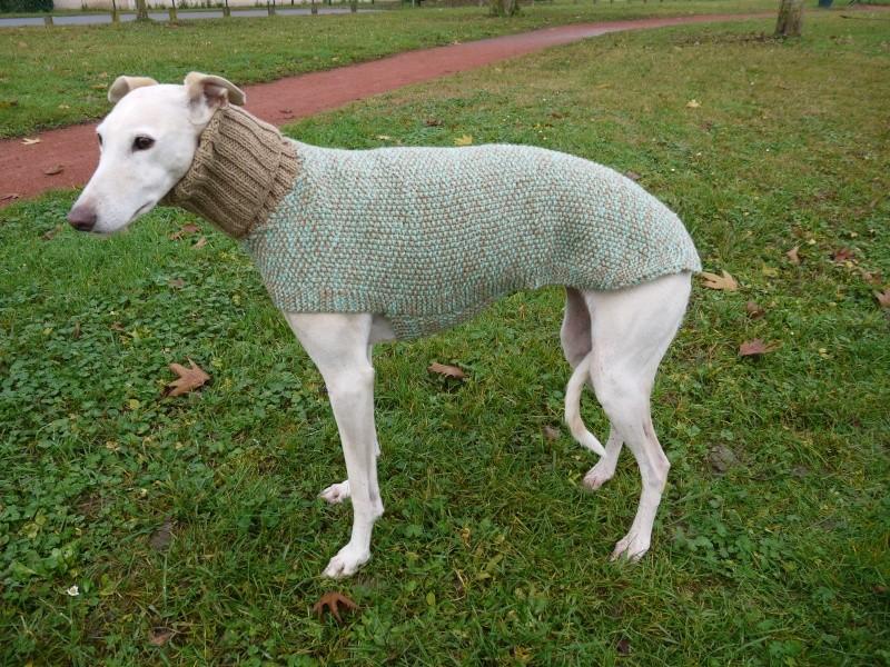 Pulls en laine réalisés au profit d'associations de votre choix P1090110