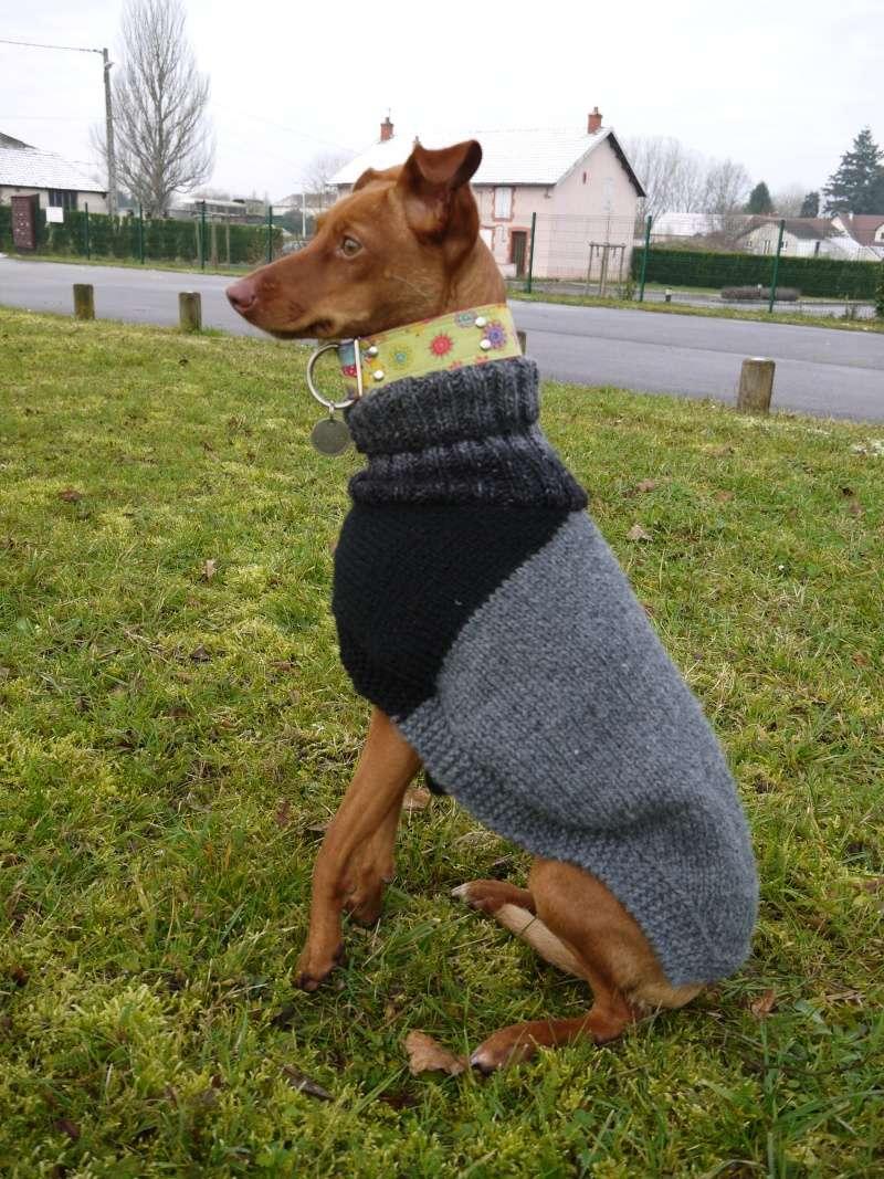 Pulls en laine réalisés au profit d'associations de votre choix P1090324
