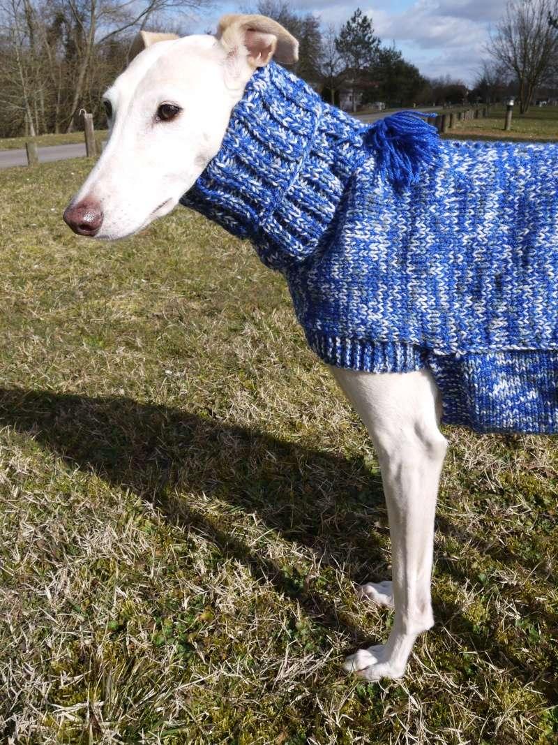Pull en laine bleu électrique gris et blanc Taille 68cm P1100414