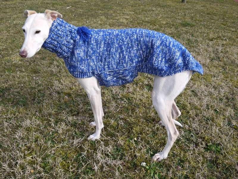 Pull en laine bleu électrique gris et blanc Taille 68cm P1100415