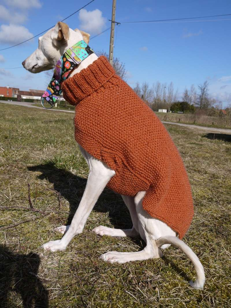Pulls en laine réalisés au profit d'associations de votre choix P1100512
