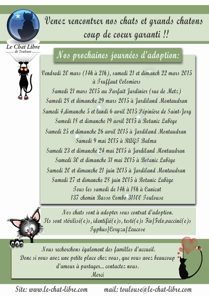 Le planning 2015 des journées adoption Affich13