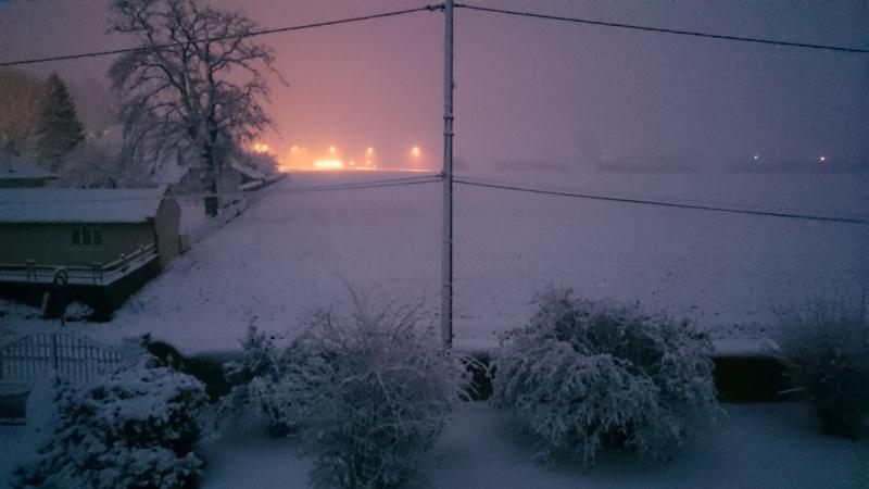 retour de la neige . Dsc_1814