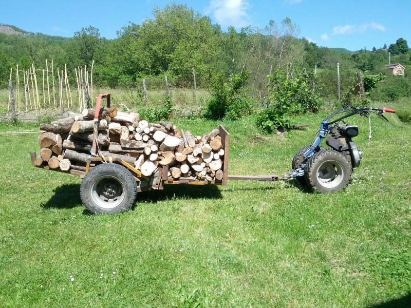 Carrello per trasporto legna Img_2021