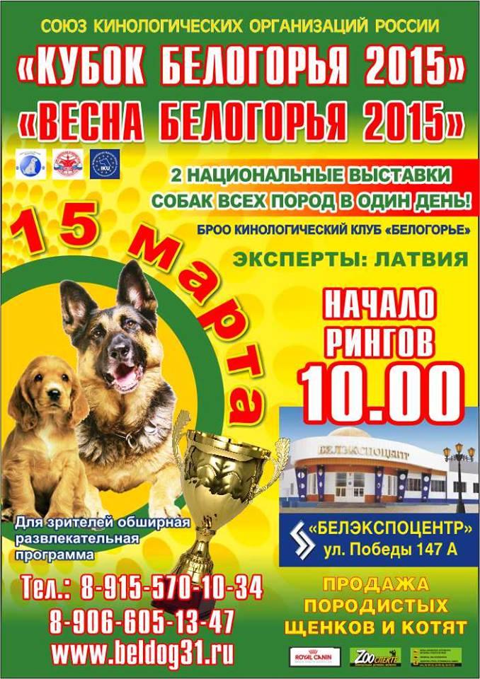 ГРАФИК ВЫСТАВОК НА 2015г. за пределами России*** 10941410