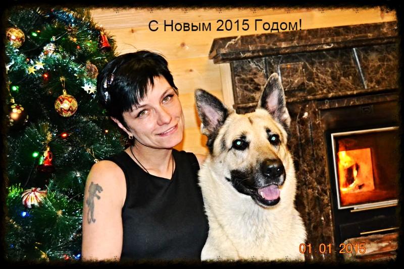 С Новым 2015 годом!!!! Editor10