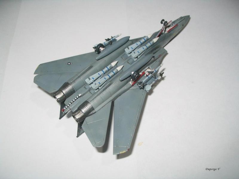 F-14D Super Tomcat 1/144 Img_0018