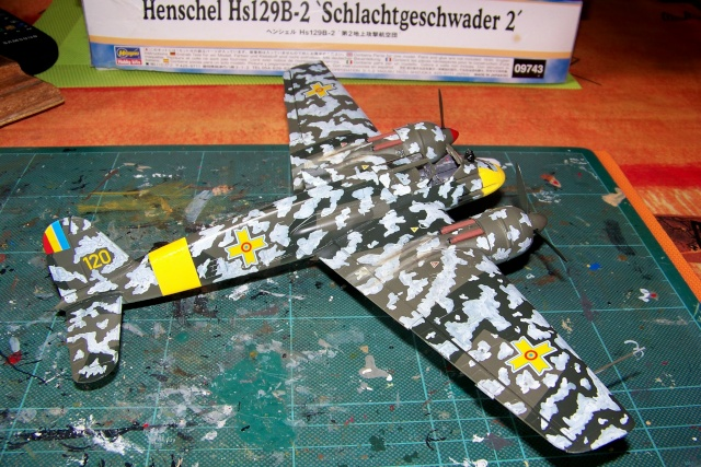 Henschel Hs129 B2 : 1/48 Lt Lazar Munteanu (fini) - Page 3 100_9059
