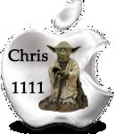 MAJ clover Cris-y10