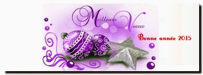 Bon Réveillon, Joyeux Noël & meilleurs voeux! - Page 2 8354f-10