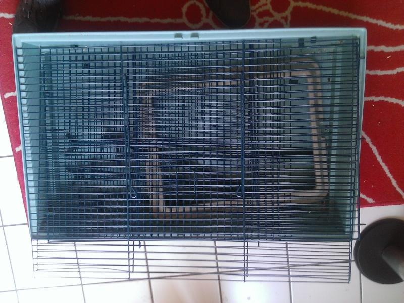[VENDS] Plusieurs cages dans le (34) Montpellier Wp_20112