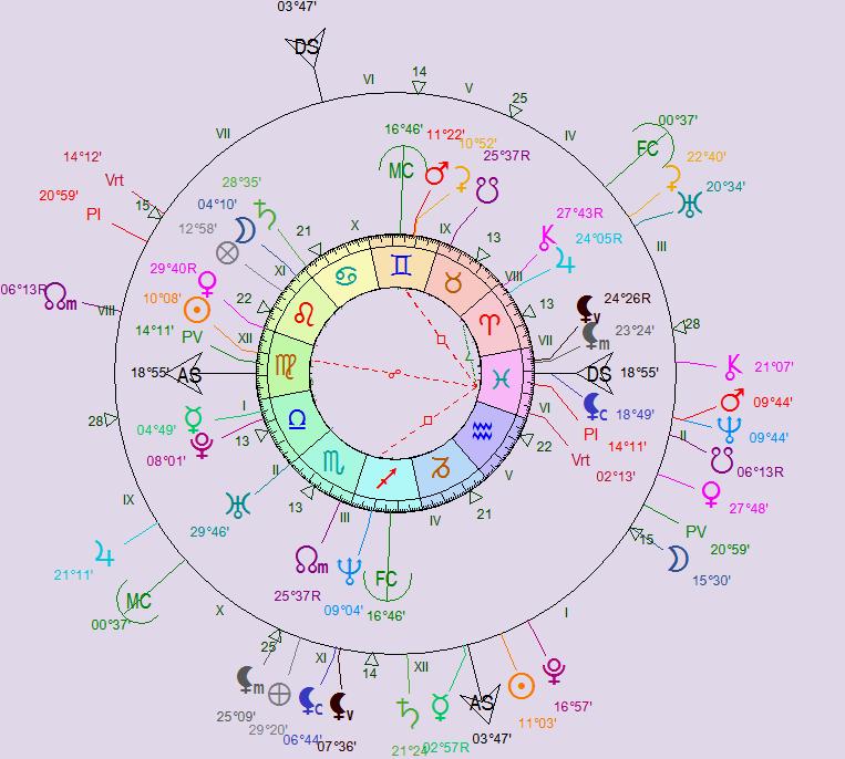 NL du 20 janvier 2015 Niko_m11