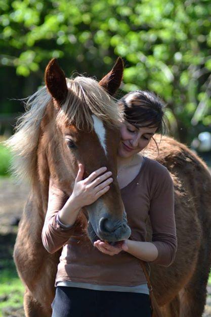 CONCOURS PHOTOS : La St Valentin équine 93133010
