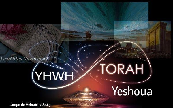 Guide pour ceux qui veulent suivre La Sainte Torah Image_10