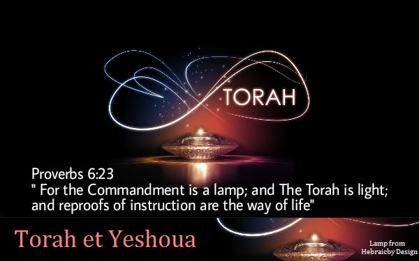 La Torah Une Lampe Torahl11