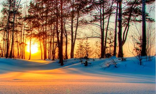 Quand le soleil se couche... 10933810