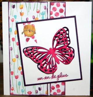 cardlift de février  - Page 6 20150288
