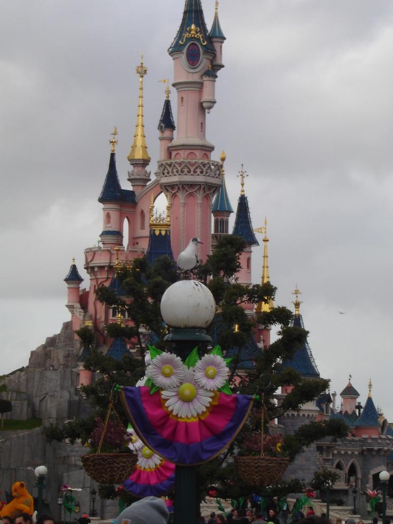 Petites vacances chez Mickey du 01/03/15 au 03/03/15 et une nuit, deux jours du 19 au 20 Octobre 2015 ( page 6 ) - Page 2 Dsc05535