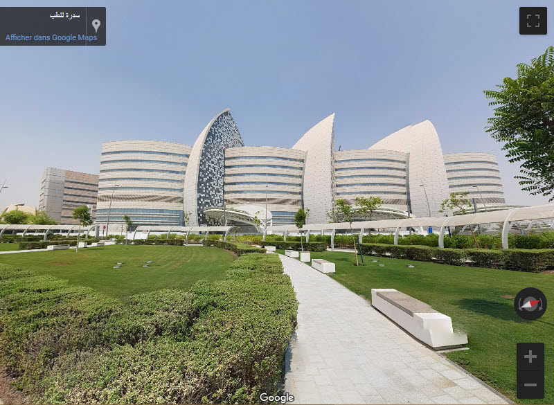 Sidra Medical and Research Center - Doha - Qatar 2019-053