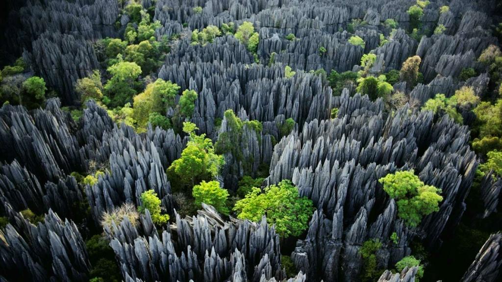Paysage incroyable à Madagascar - Tsingy de Bemaraha Bemara10