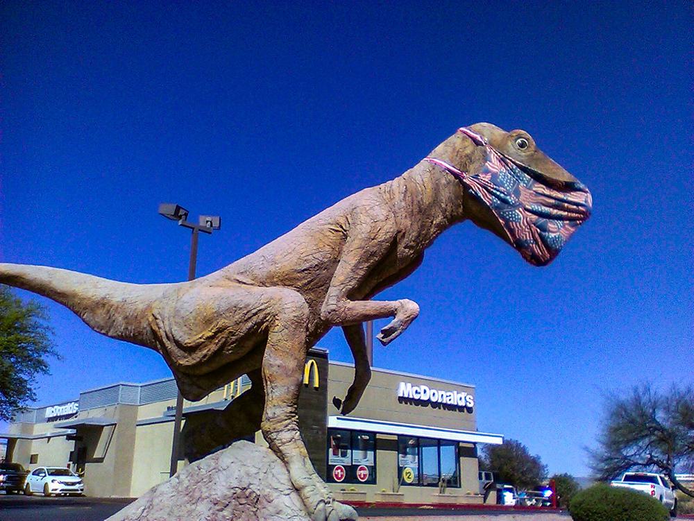 Le T-Rex de Benson - Arizona - USA Img_0010
