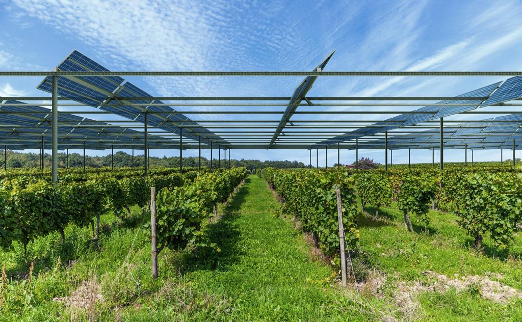 la première centrale agri-voltaïque est en France. Tresse11