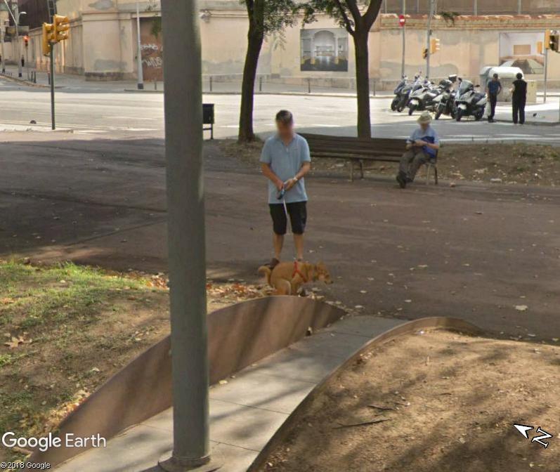 STREET VIEW : Et la poche pour mettre les déchets???? - Barcelone Www104