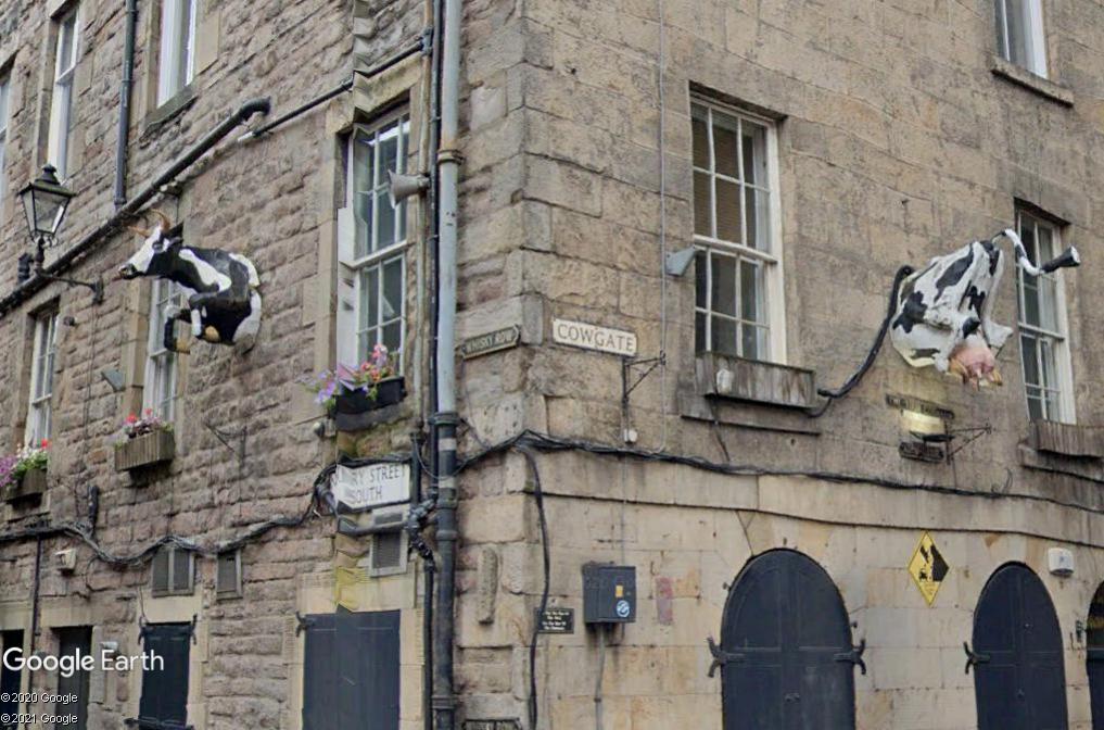 La vache d'Edimbourg - Angleterre Z1411