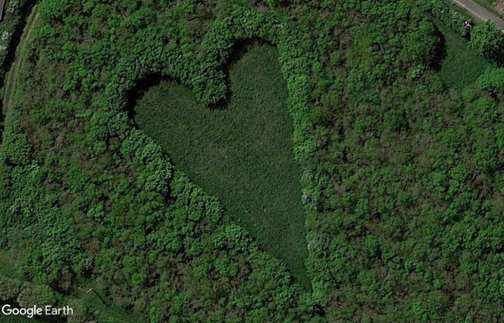 Les cœurs découverts dans Google Earth - Page 9 Z232