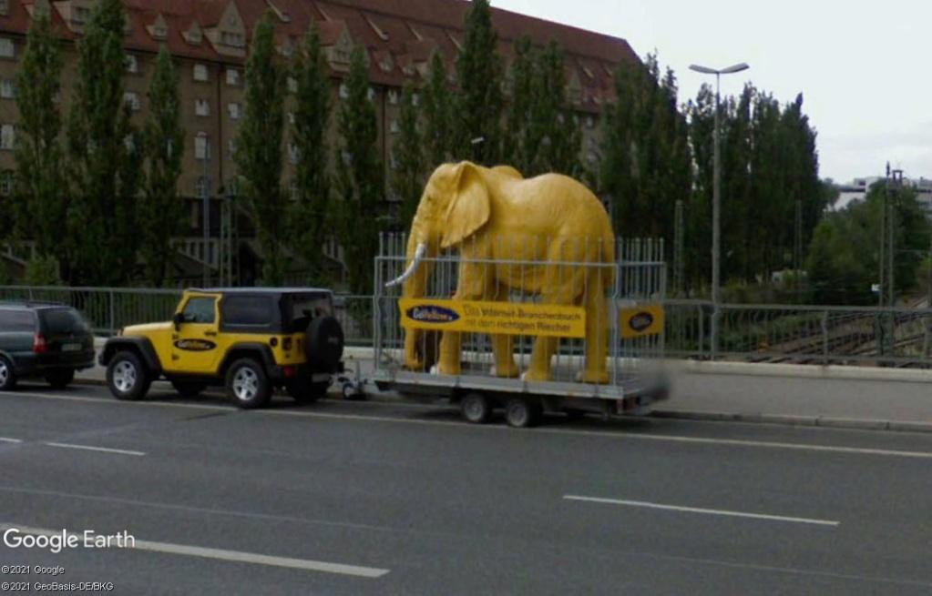 L'éléphant jaune de Munich - Allemagne Z238