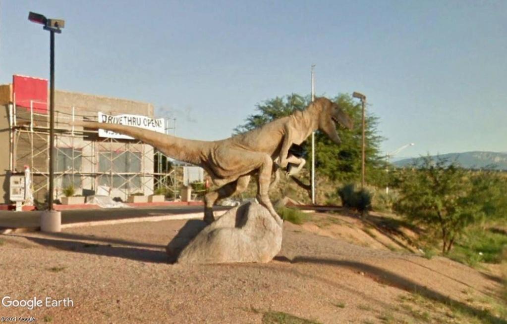Le T-Rex de Benson - Arizona - USA Z3910