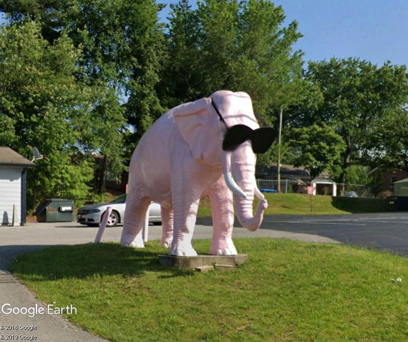 STREET VIEW : Eléphant rose Cookville Tennessee USA Zzz1105