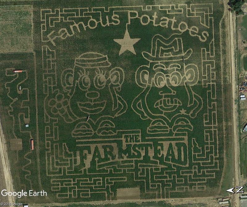 Dessin en l'honneur de la patate - Boise - Hidaho Zzz411
