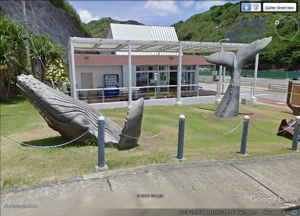 La baleine de l'île Haha. Zzzzz10