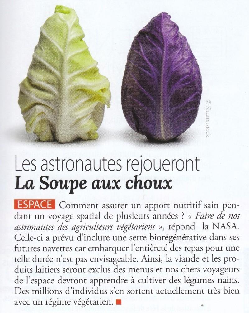 L'alimentation végétale et les graisses végétales augmenteraient la longévité Espace11