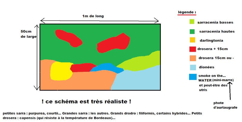 "tourbière ""en pot"" (enfin!!!) Schyma10"