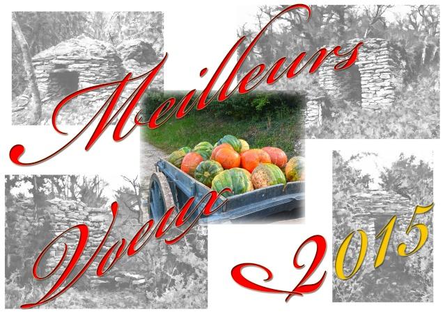 Bonne Année & Meilleurs Voeux Voeux_10