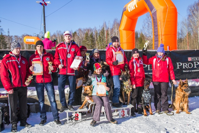 8  марта       3 этап Кубка России по кинологическому спорту (гонка-буксировка)  _mg_2012