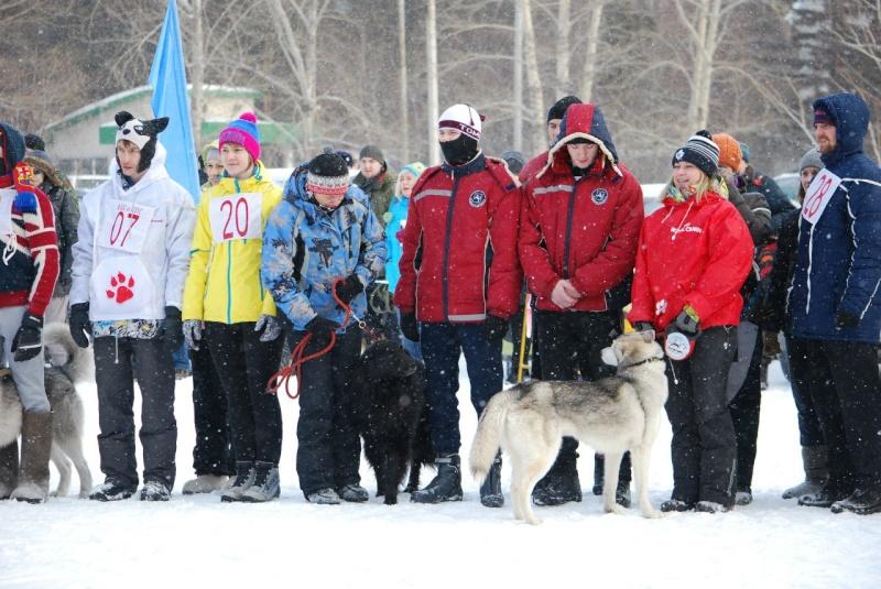 21 февраля 2015 года КУБОК РОССИИ (2 этап) по зимним дисциплинам кинологического спорта. г. Омск Axsbgo10