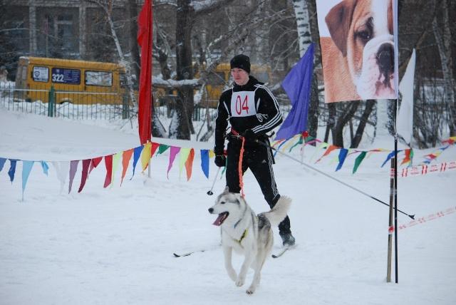 21 февраля 2015 года КУБОК РОССИИ (2 этап) по зимним дисциплинам кинологического спорта. г. Омск Sfsb5o10