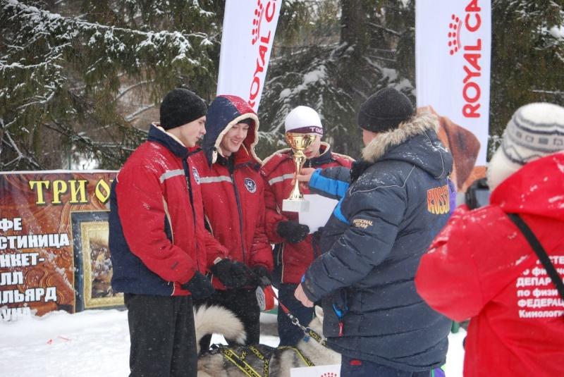 21 февраля 2015 года КУБОК РОССИИ (2 этап) по зимним дисциплинам кинологического спорта. г. Омск Wnmcnu10