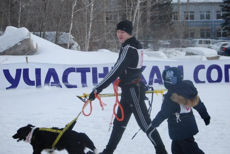 21 февраля 2015 года КУБОК РОССИИ (2 этап) по зимним дисциплинам кинологического спорта. г. Омск Ydgj3u10