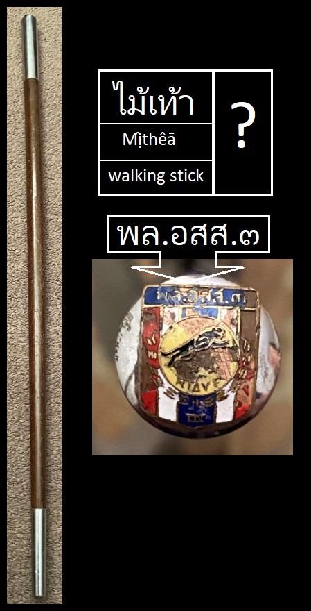 Insigne inconnu sur bâton de commandement  Aeoao11