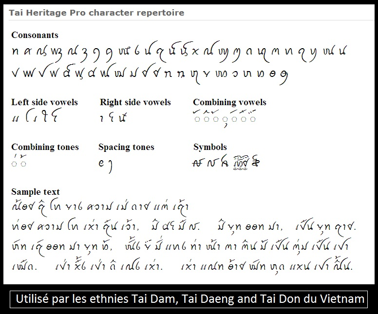 Insigne inconnu sur bâton de commandement  Tai_da11