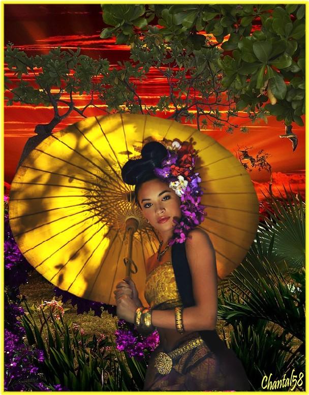 Asiatiques  - Page 2 03d57b11