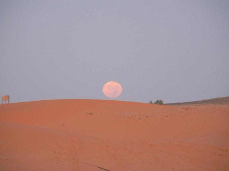 un p'tit voyage au Maroc en mars 2015? P1090410